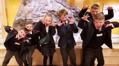 Meerkats visit Maidstone Museum