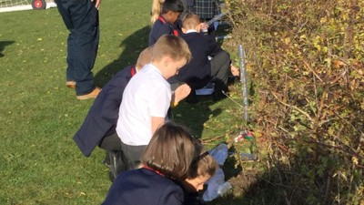 Pupils plant trees given by Woodland Trust